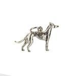 Greyhound_2