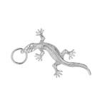 lizard_1